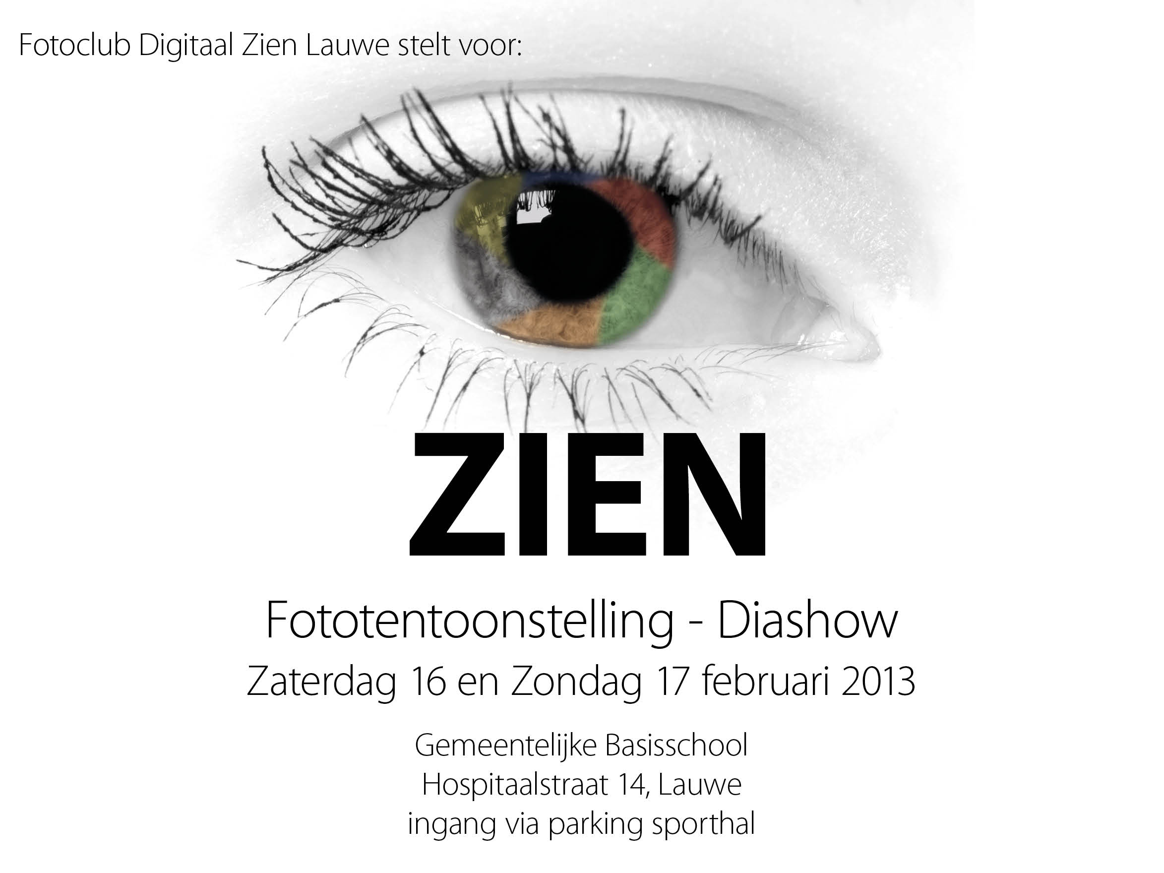 dzl_2013_zien_webaankondiging