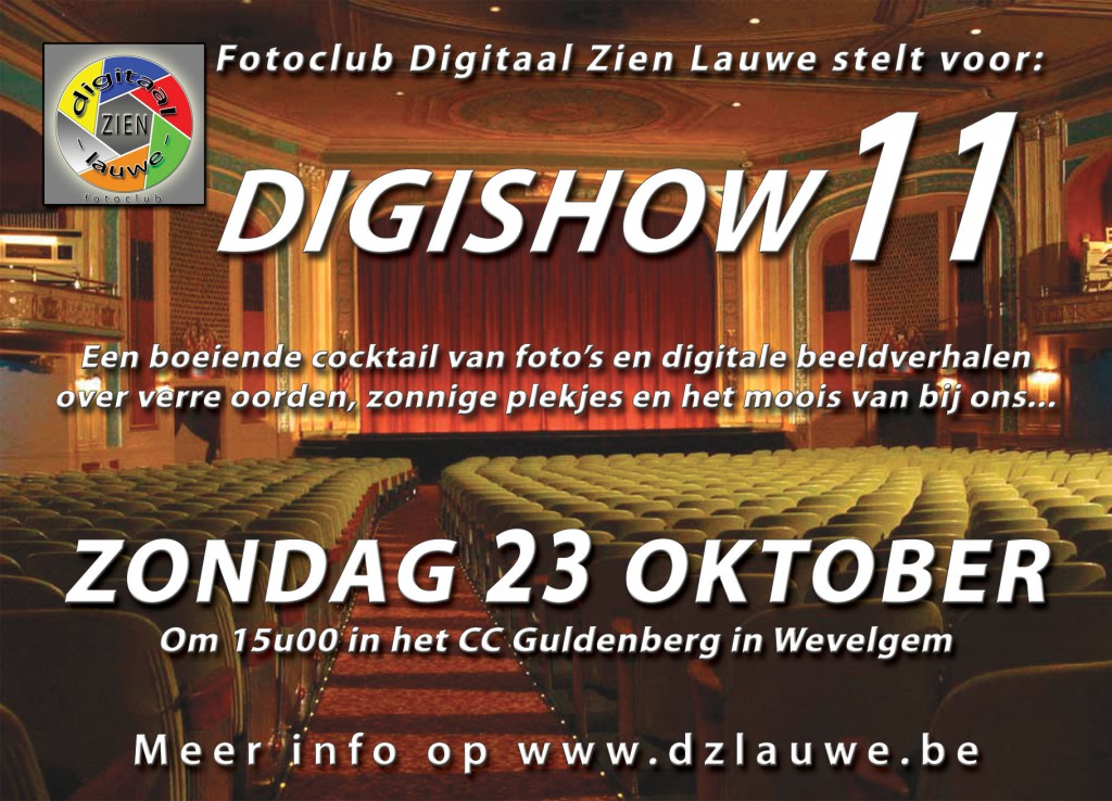 dzl_digishow-11_flyer_recto_rgb_a6
