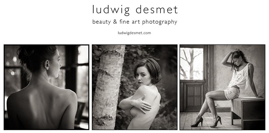 DZL_2016_LudwigDesmet_website