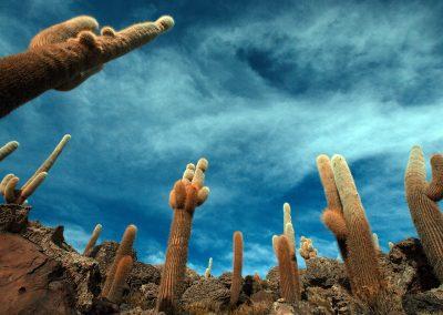 Bolivië © Regi Popelier